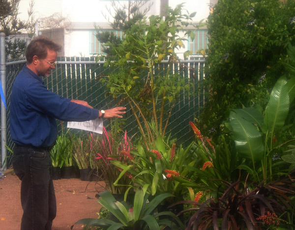 Tropical garden expert David Feix talks about fab tropicals, bromeliads & succulents for interesting Fall & Winter color.