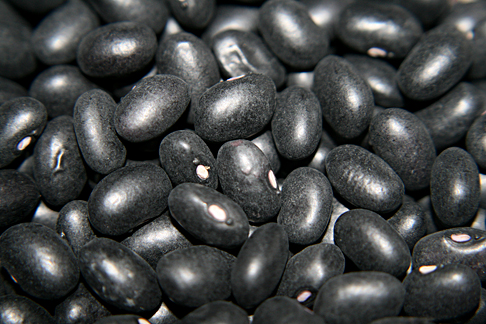Bean 'Black Valentine'
