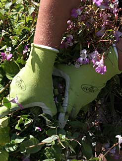 Medium Green Atlas Gloves