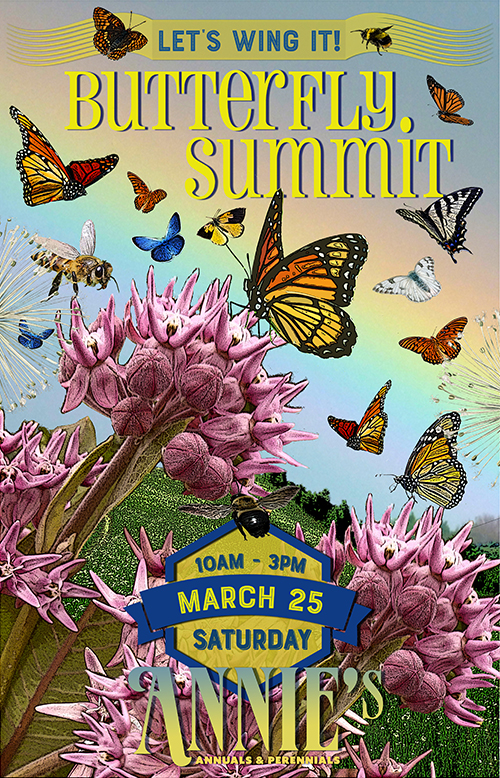 Join us for our first ever<br/>BUTTERFLY SUMMIT!