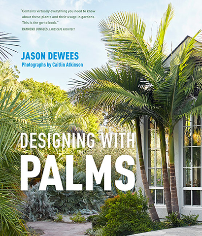 Discover the Power of Palms!